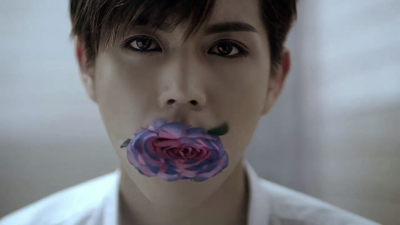 Resultado de imagem para flower in mouth meaning