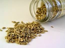 Fennel as an Herbal Remedy for Kidney Stone Crushers