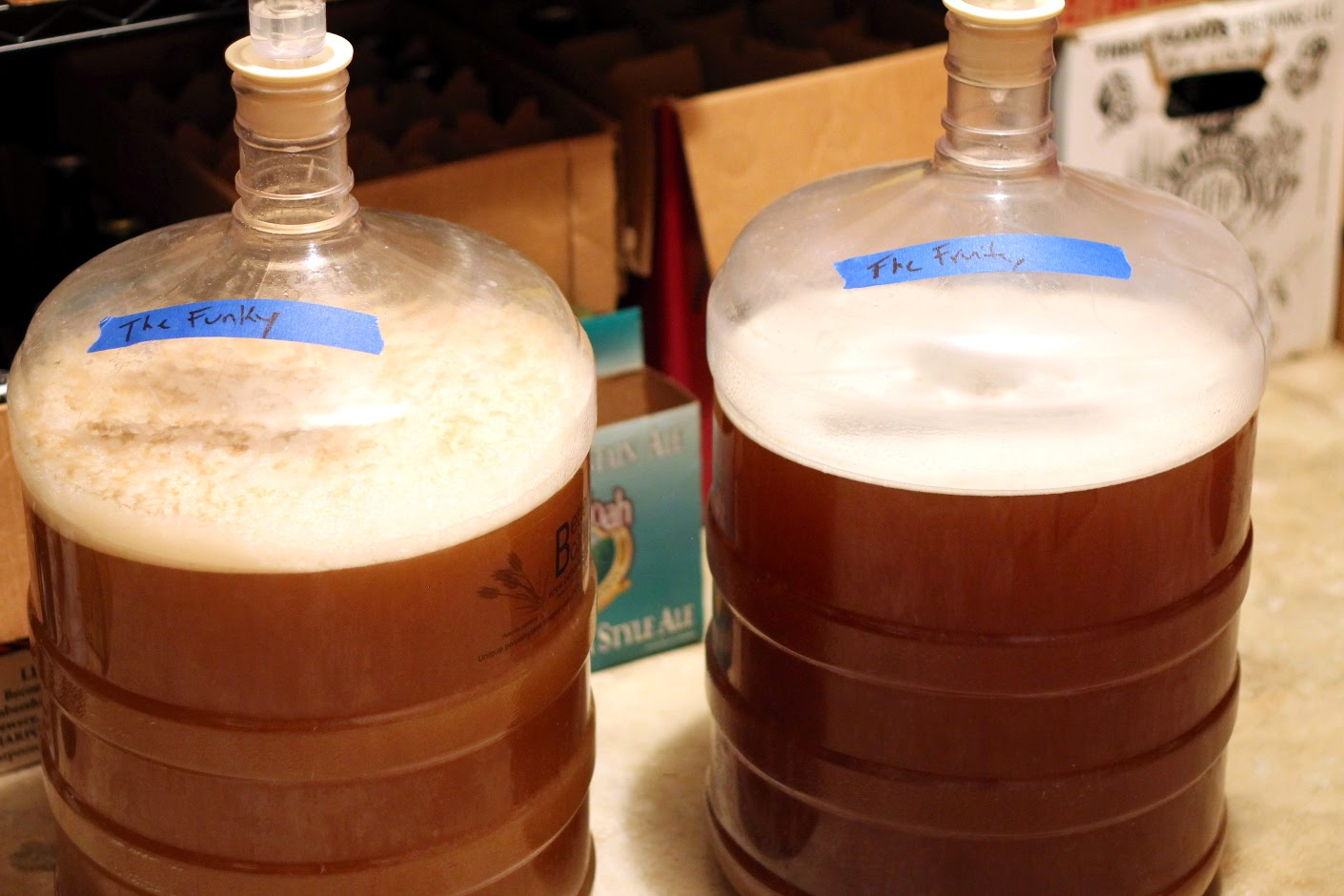 The start of the primary fermentation.