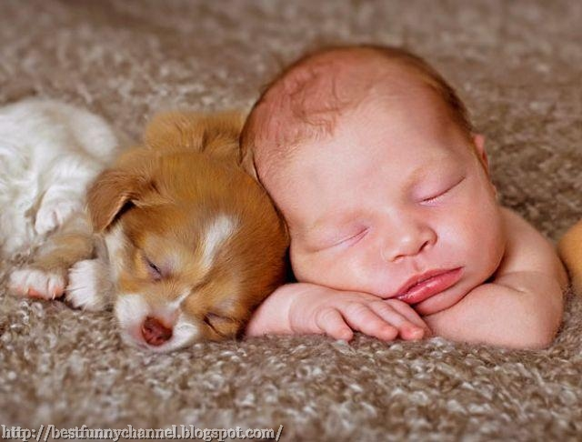 Cute baby and puppy.