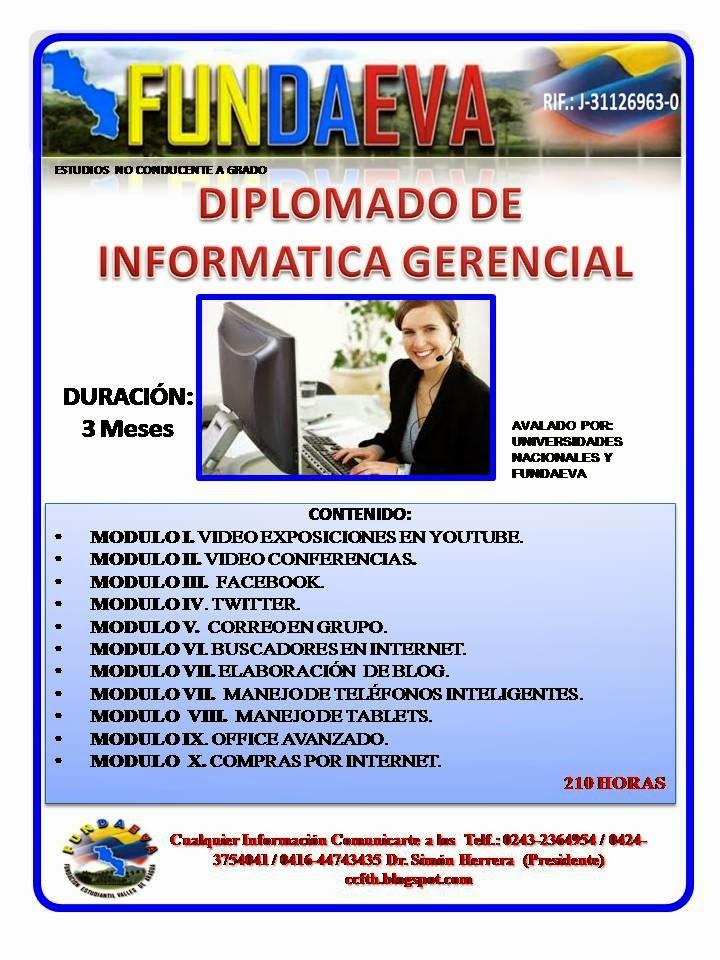 DIP INFORMATICA GERENCIAL