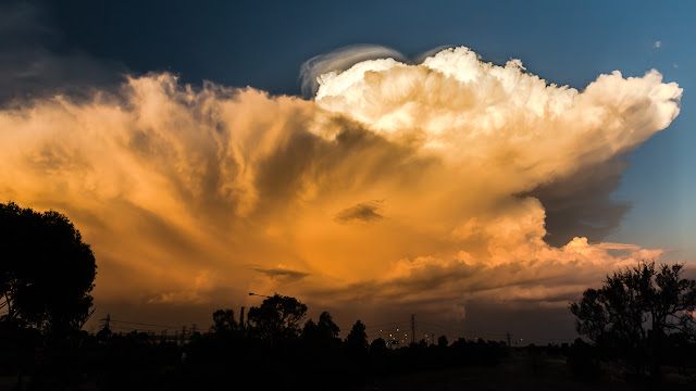 cumulonimbus calvus cloud at sunset
