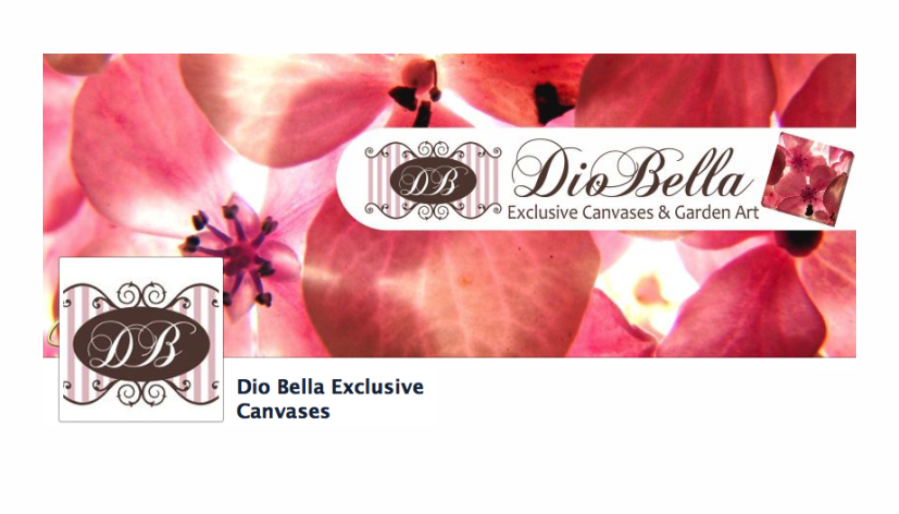 https://www.facebook.com/DioBella.Exclusive.Canvases