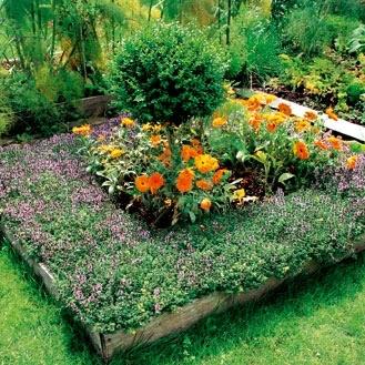 decoracion jardín pequeño