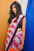 Adah Sharma Photos at Heart Attack Audio Success meet-thumbnail-12