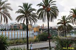 Sevilla eres un paraíso.