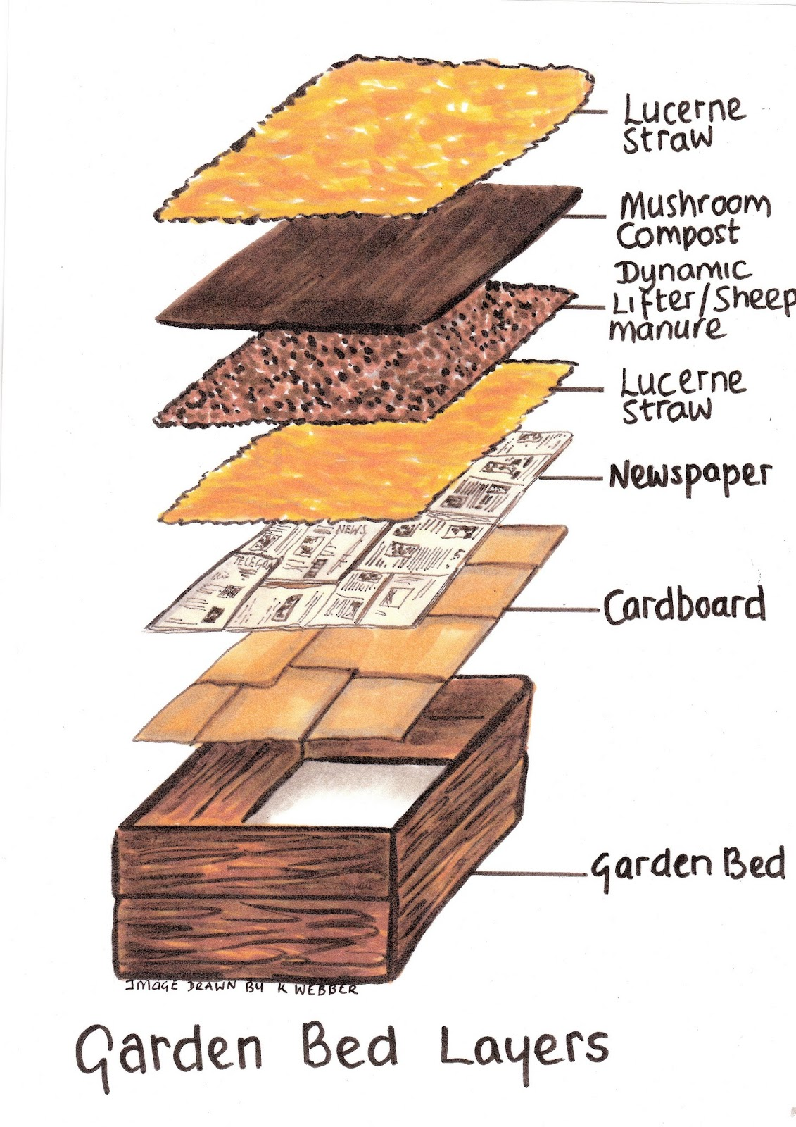 How to make raised garden beds for vegetables the for Garden soil layers