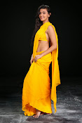 Neelam Upadhyay photos in Yellow saree from Action-thumbnail-11