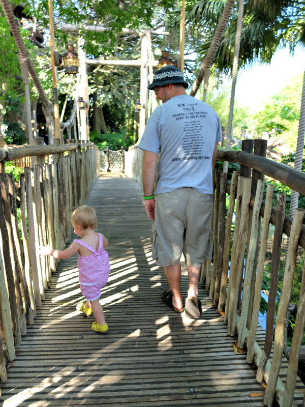 Magic Kingdom's Swiss Family Robinson Tree House