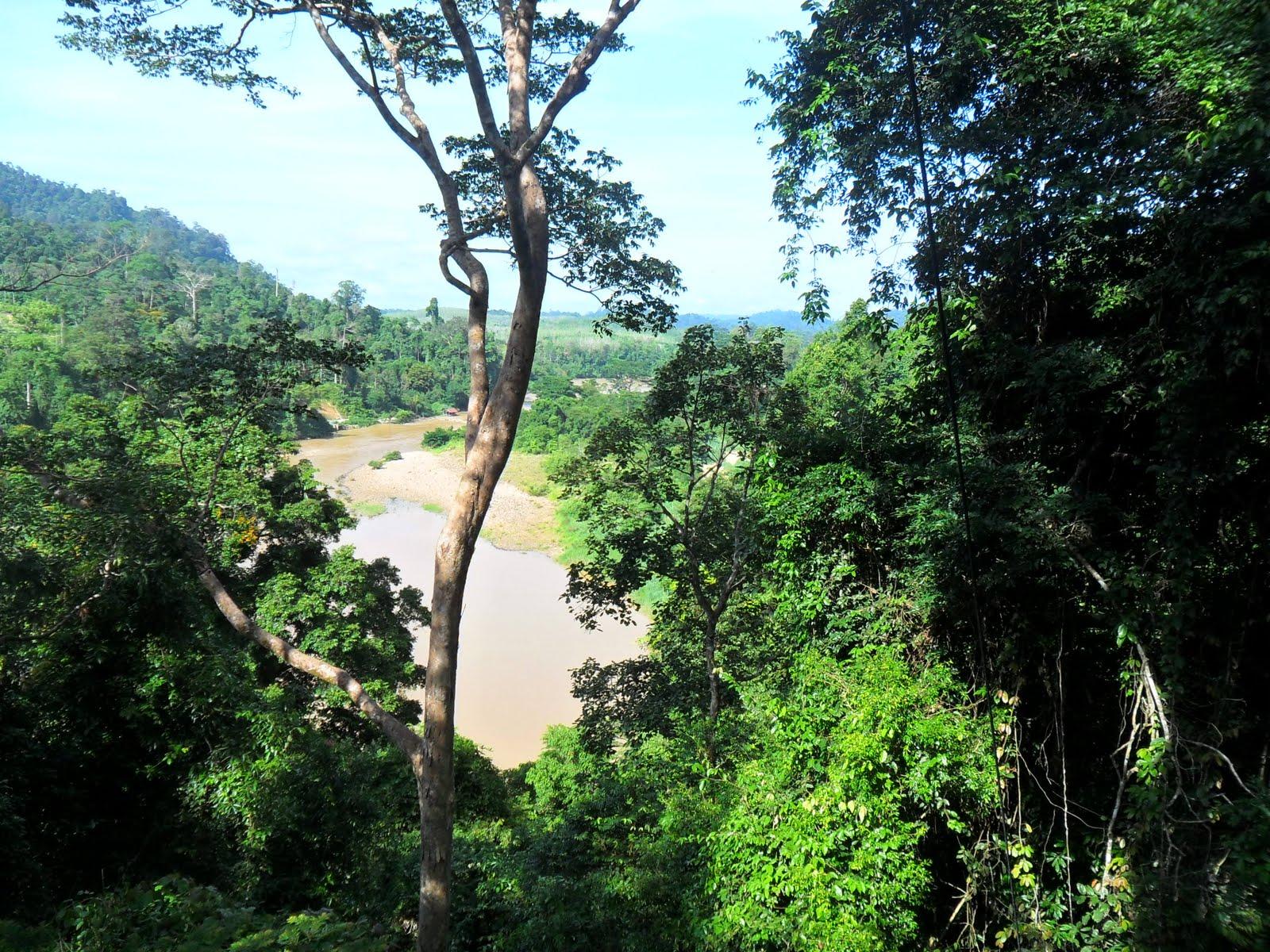 case study of taman negara malaysia tourism essay Igcse and gcse geography case studies living near volcanoes (tourism) tropical rainforests - taman negara, malaysia:.