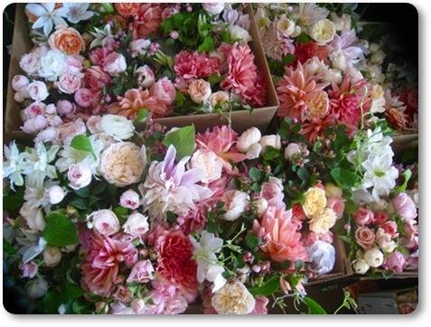 blomsterleverand