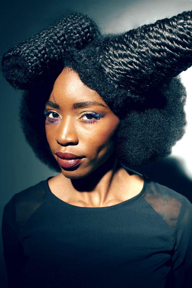 L'Art de la Coiffure par Sephora Joannes ~ Afro Mango & Cie