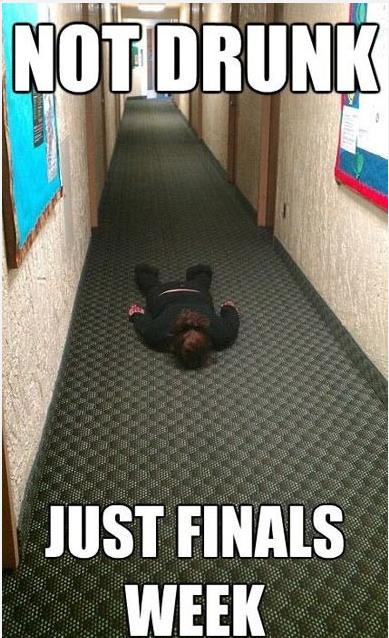 Meme Drunk vs Finals Week