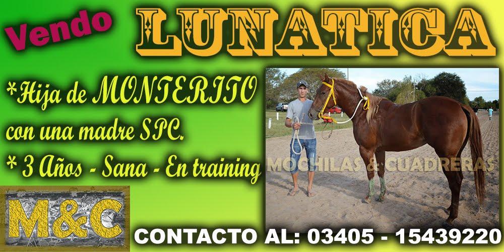 LUNATICA - 11-06-15