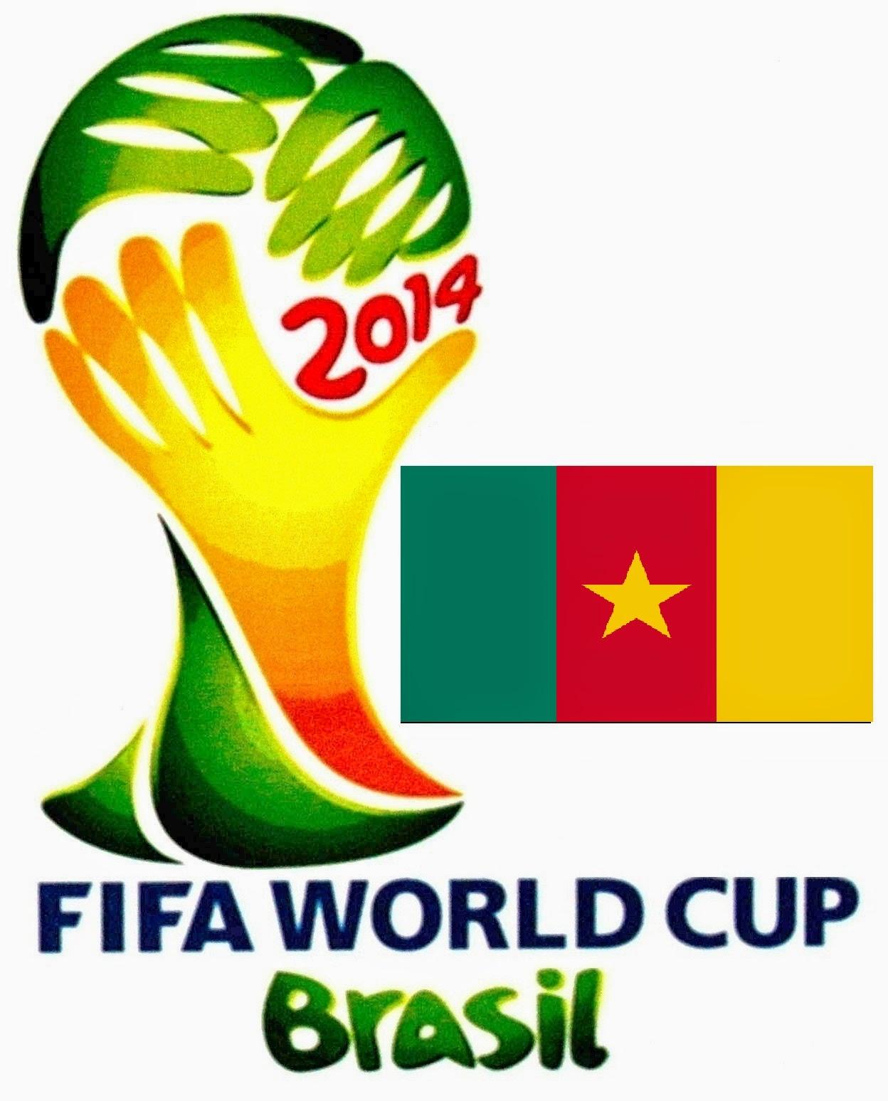 Daftar Nama Pemain Timnas Kamerun Piala Dunia 2014