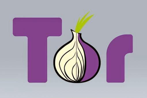 El uso de la red anónima Tor se duplica casi cada año
