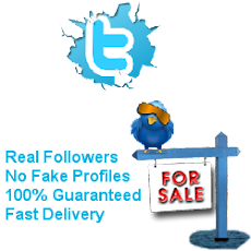 Unlimited Twitter Followers