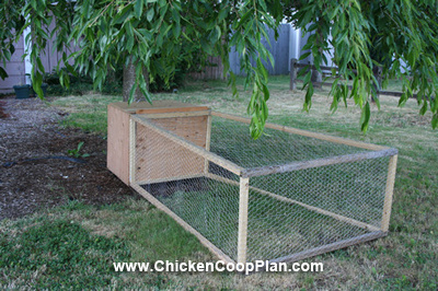 Under tree chicken coop