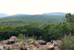 Áreas naturales protegidas sin plan de manejo.