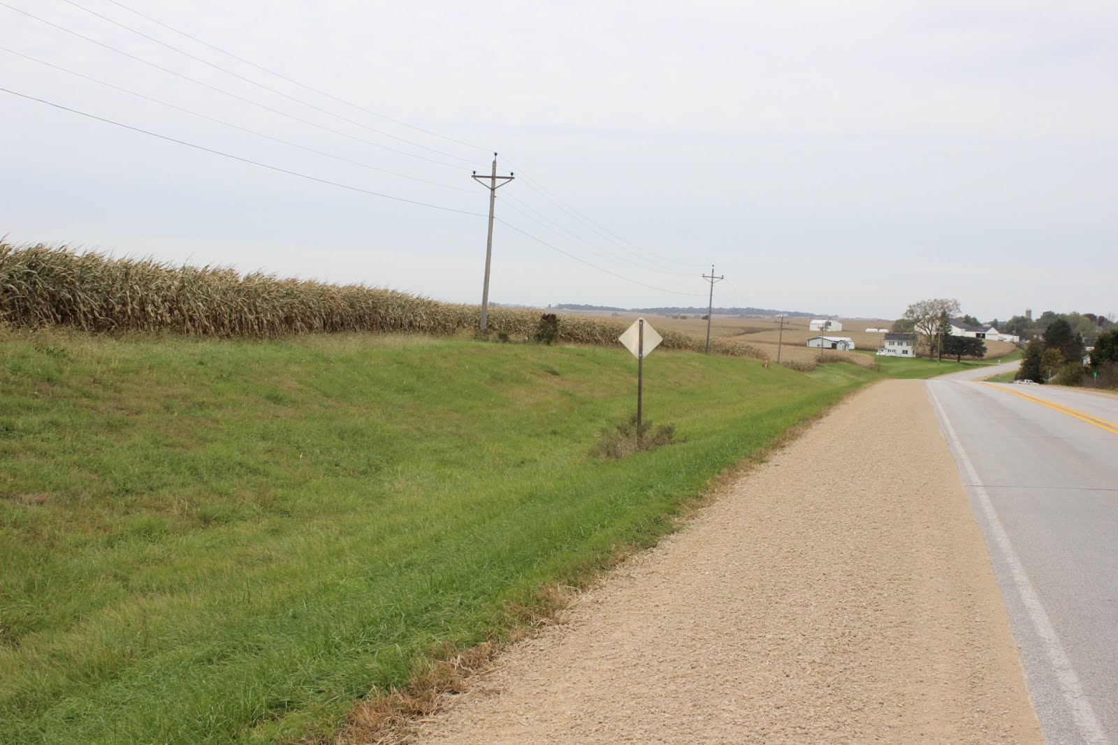 FARMLAND AUCTION 12/4/19