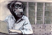 The Primate Diaries
