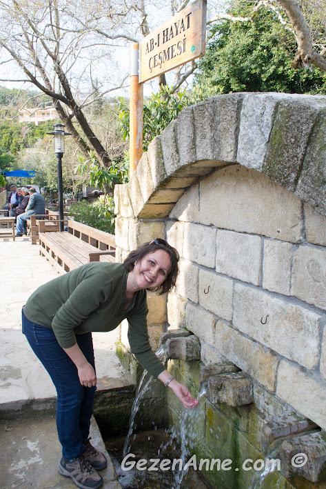ab-ı hayat çeşmesinden su içerken, Musa Ağacı, Hıdırbey köyü Hatay