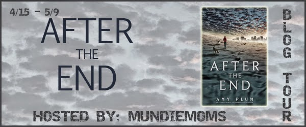 After The End Blog Tour