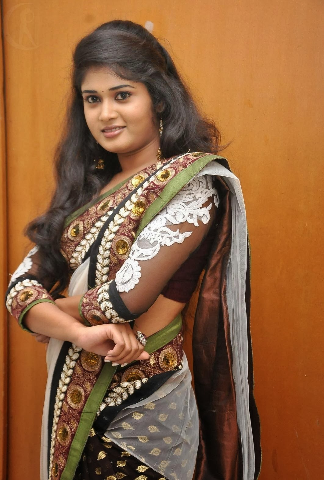 Hot South Indian Actress in Saree