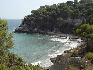 Tarragona beach, nature and sea rocks