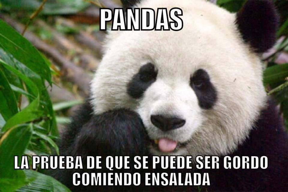 Pandas y...