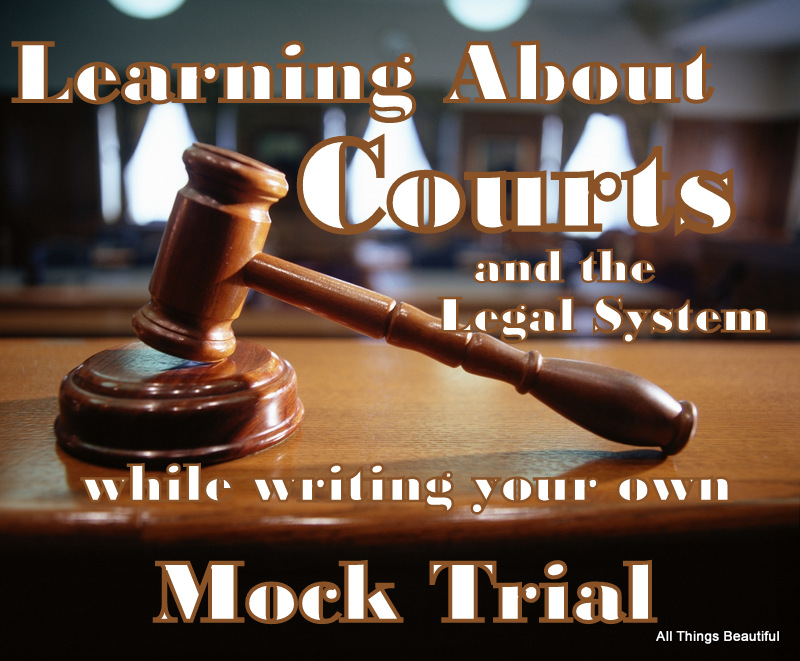 create an outline of the criminal trial process from jury selection to sentencing The stated purpose of jury selection in these jurisdictions is to assure the court that those jurors who  in any jury trial,  juror decision-making,.