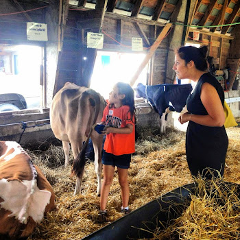 Elise Stefanik Tours Fair in Gouverneur
