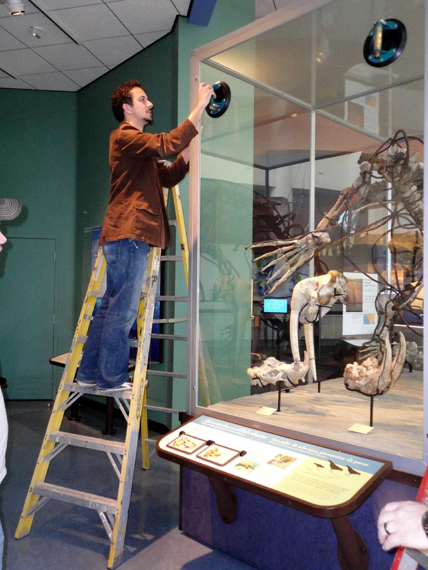 Glass Door San Diego Natural History Museum