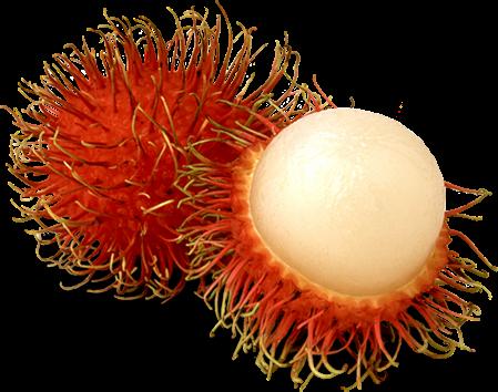 5 frutas que você provavelmente não sabe que têm propriedades anti-câncer