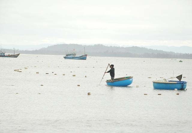 Đánh bắt lộc biển nhỏ xíu bỏ túi cả chục triệu mỗi đêm