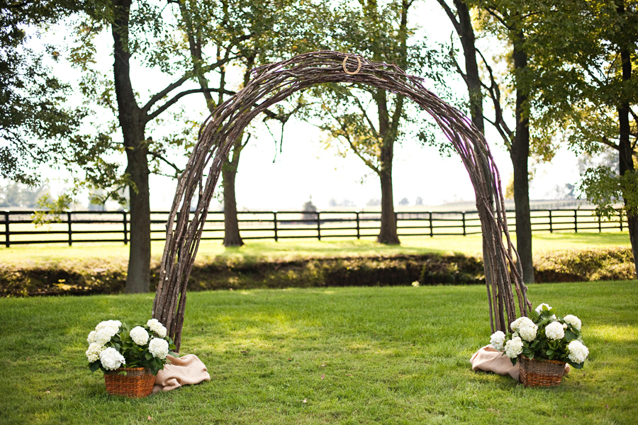 Grape vine wedding