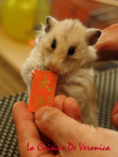 La Cuisine De Veronica,V女廚房,農曆新年,恭喜發財,倉鼠,Hamsters,CNY,Chinese New Year