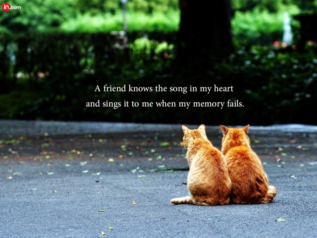 Những hình ảnh đẹp nhất về tình bạn dễ thương