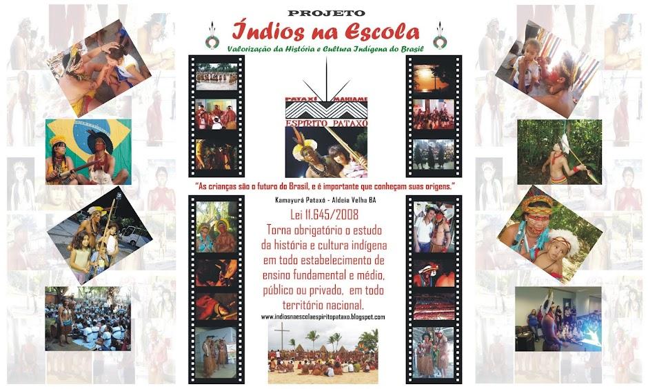 Projeto Índios na Escola