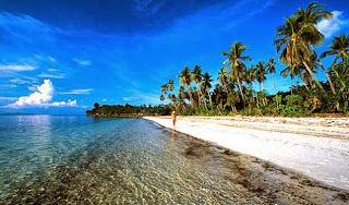 Provinsi Kalimantan Utara