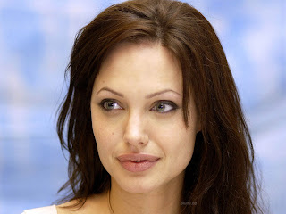 Angelina Jolie Wiki and Pics