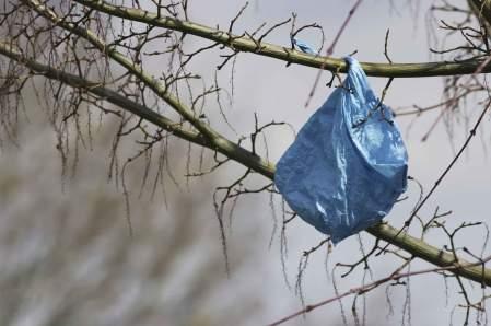 أضرار الأكياس البلاستيكية