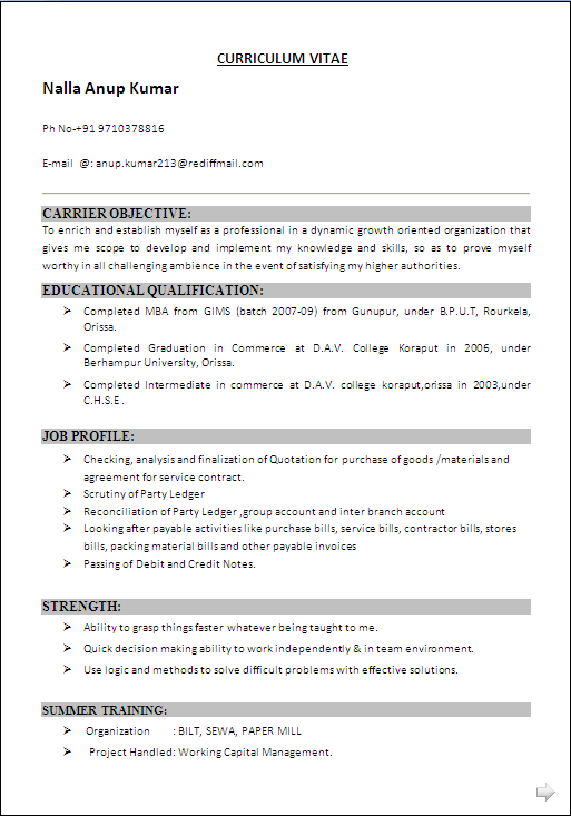 DOWNLOAD RESUME FORMAT IN WORD DOC