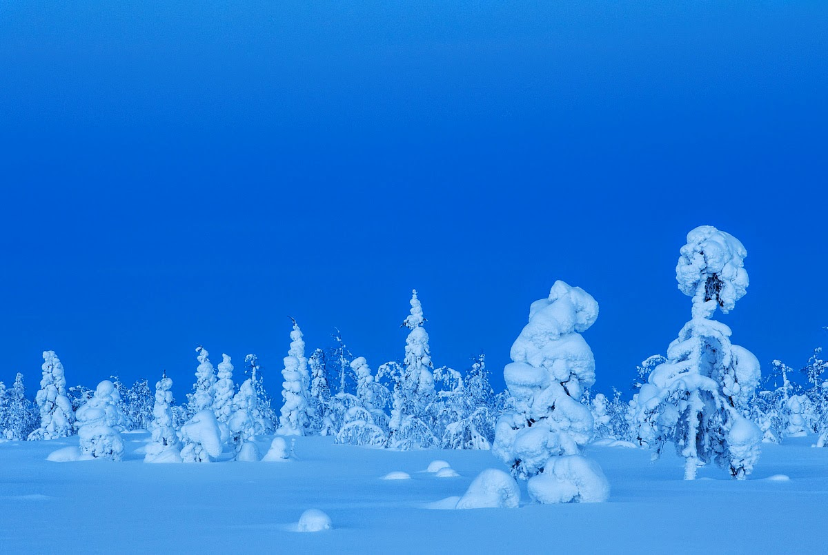 Winter Wonderland in Kuusamo, Finland; Danny Green / www.agami.nl
