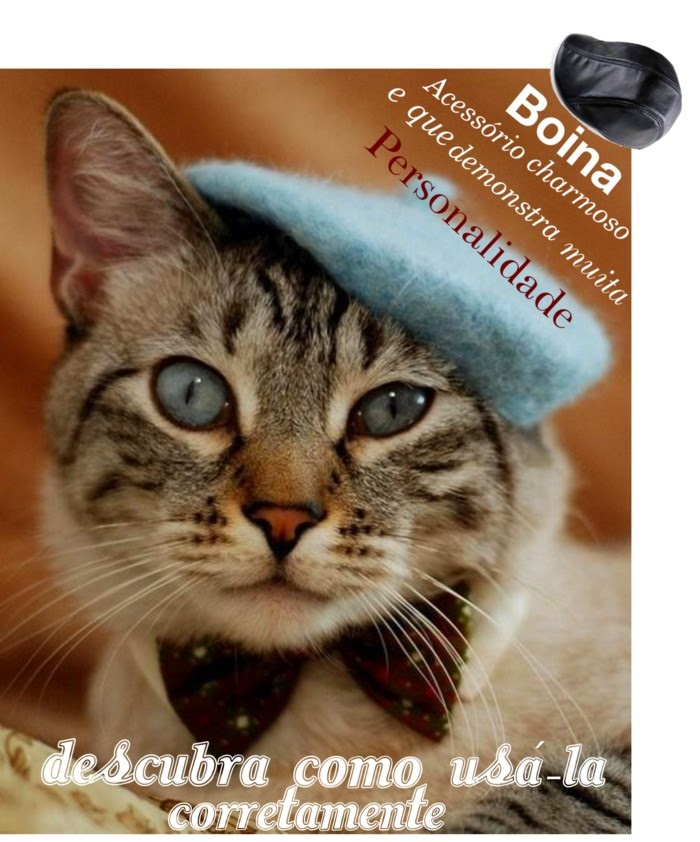boina masculina-comprar chapeu-boina masculina como usar-moda masculina casual-revista moda masculina-roupas online-acessorios para gato-ong de gatos-buy male-male beret hat beret-using-male fashion casual menswear magazine-online-clothing-accessories for cat-ong cat
