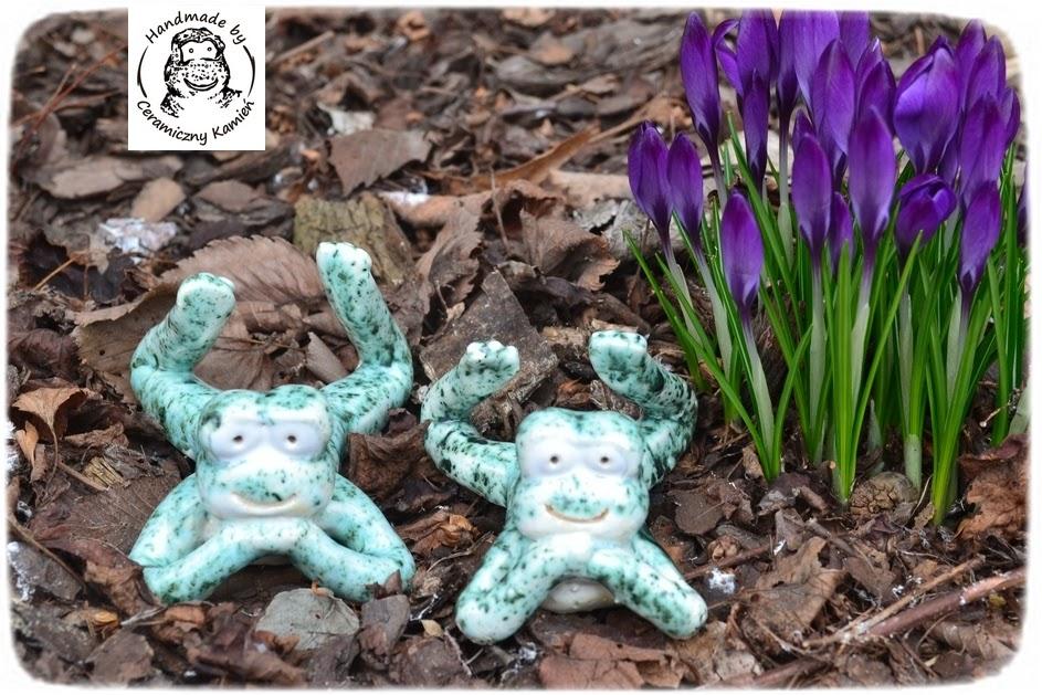 Wiosna w Kamieniu