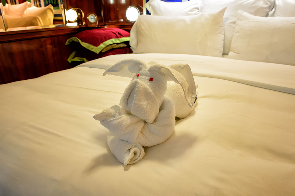 Dog Towel Animal on the Norwegian Pearl