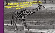 #laGiraffa
