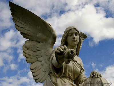 Zdjęcie przedstawiające posąg anioła z różą w ręku, znajdującego się na cmentarzu w Bydgoszczy, inny punkt widzenia, zdjęcie z żabiej perspektywy, kadr poziomy
