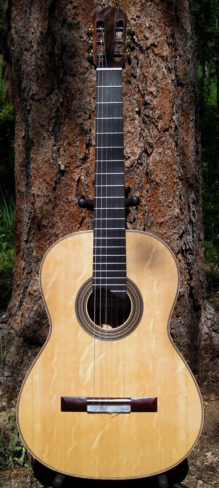 SOLD! Antonio Torres FE 19 Model, Sitka Spruce/Granadillo